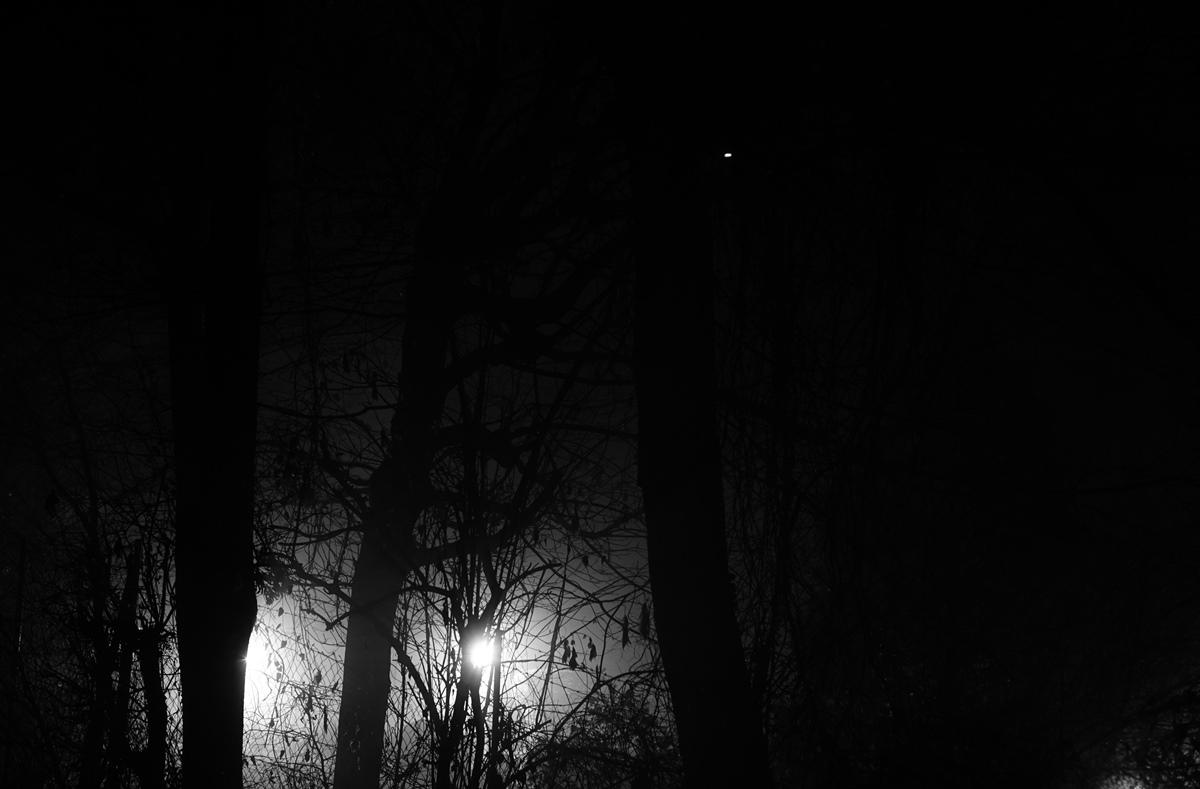 Ausgesprochen Stille Nacht